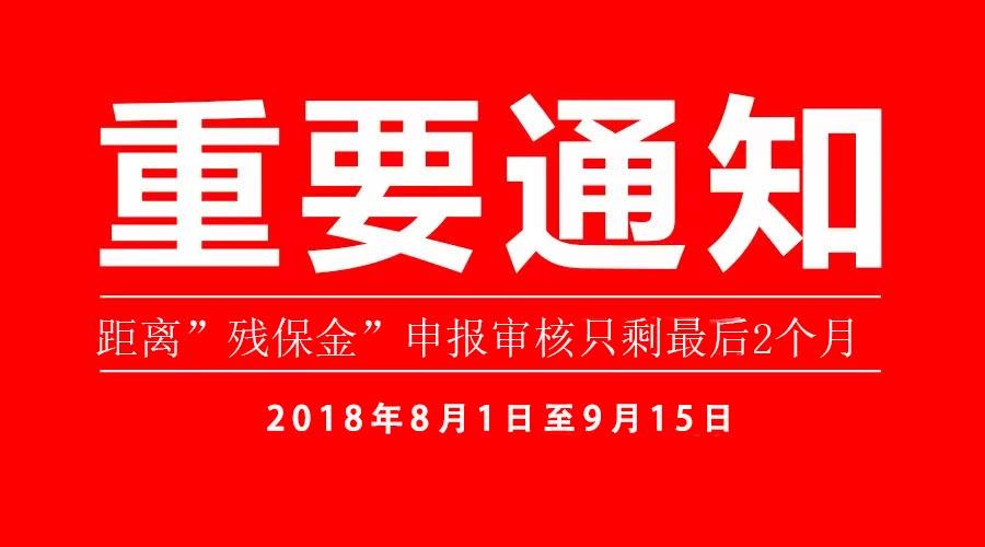 上海市企业如何缴纳残保金,帮助残疾人就业政策插图