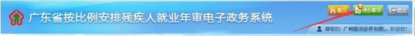 用人单位注意!广东省2020年按比例安排残疾人就业年审工作开始了插图(15)